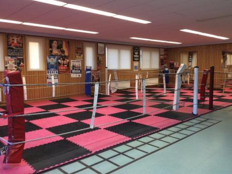TGW Box-Gym