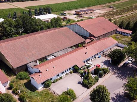 Tennis- u. Soccerhalle Pfeddersheim